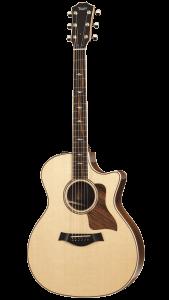 hannover-gitarre-taylor-814ce
