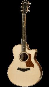 hannover-gitarre-taylor-816ce